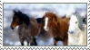 Horse Stamp 1 by ObsessedWithHorses