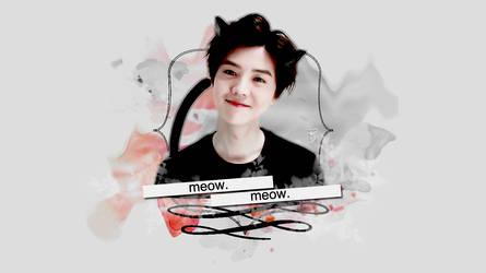 MEOW WALLPAPER   Luhan by EXOEDITIONS