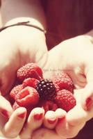 Berries by machihuahua