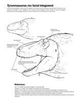 Tyrannosaurus face (Again) by Slay66