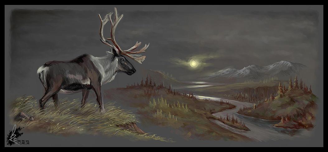 Caribou by davidkawena