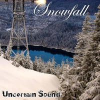 Snowfall Album Cover by UncertainSound