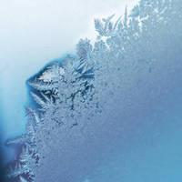 Snow. by NurNurIch