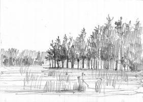 New Forest Sketch. by KrystianWozniak