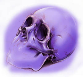 Skull by ArtistMaz