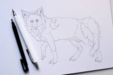 Fox OC Sketch by Paschmina