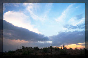 Estrella Cactus Sunsets - 3 by Delusionist