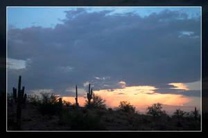 Estrella Cactus Sunsets - 4 by Delusionist