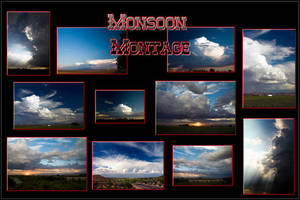 Monsoon Montage Poster by Delusionist