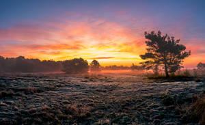 The sun rises by OnHorizon