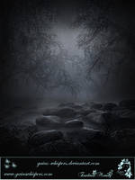 Creepy Woods by Zankruti-Murray