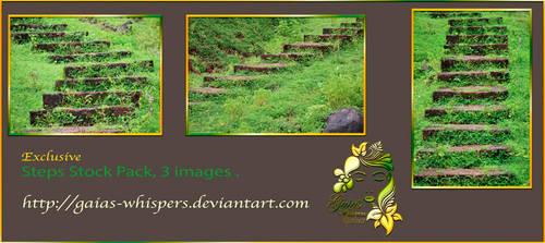 Steps Preview by Zankruti-Murray