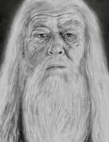 Dumbledore by PointVision