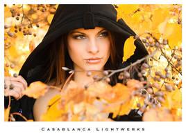 25 by casablancalightwerks