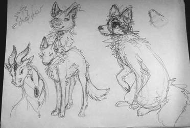 Animals and dragon sketches by Coline25