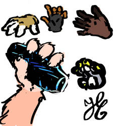 Furry hands studies by Coline25