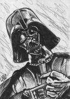 Darth Vader PSC1 by tdastick