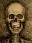 Skull Portrait 9-23-2012 by myconius