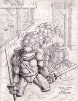 Eastman Teenage Mutant Ninja Turtles 6-4-2017 by myconius