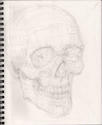Skull Sketch 10-6-2018 phz1 by myconius