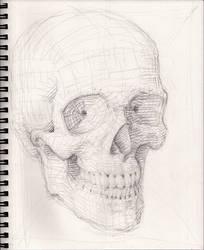 Skull Sketch 10-6-2018 phz2 by myconius