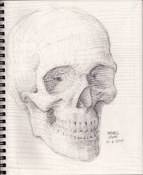 Skull Sketch 10-6-2018 phz3 by myconius