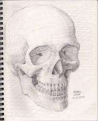 Skull Sketch 10-6-2018 by myconius