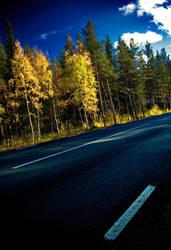 Autumn road by Lidodido