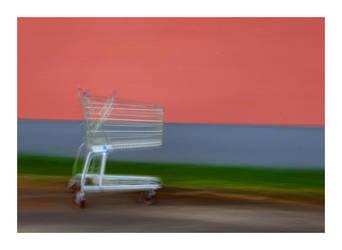 Shoppingcart by Lidodido