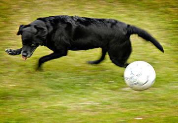 Soccer 2 by Lidodido