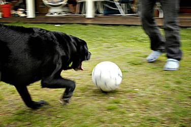 Soccer 3 by Lidodido