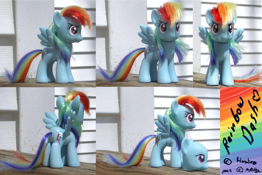 Customized Rainbow Dash by brewing-trouble