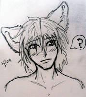 Fox boi by PhoenixWildfire