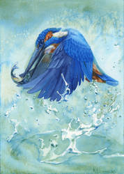 -Alcedo atthis- by RiEile