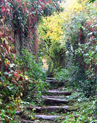 autumn stairs by Fall-Leaves-Club