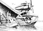 Seaplane by Lipatov