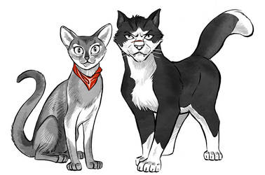 Cats of the Hawk: Guts and Casca by Lipatov
