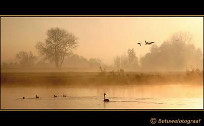 Its a foggy world........ by Betuwefotograaf