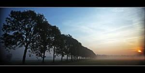 Monday Misty Morning by Betuwefotograaf