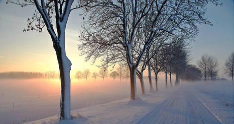 Winter in Holland  IV by Betuwefotograaf