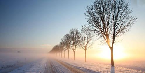 'Endless Morning' by Betuwefotograaf
