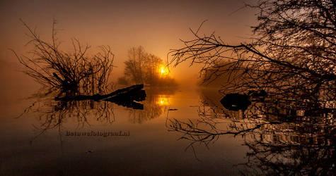 Transquility  VII by Betuwefotograaf