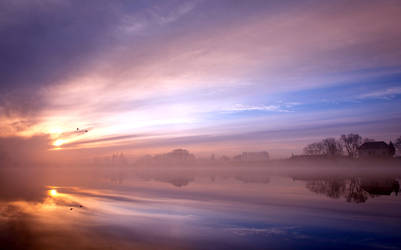 It was a foggy and beautiful morning........... by Betuwefotograaf