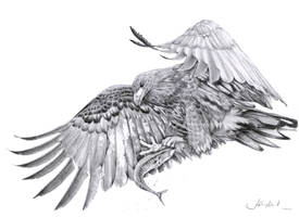 Eagle by anthrobot