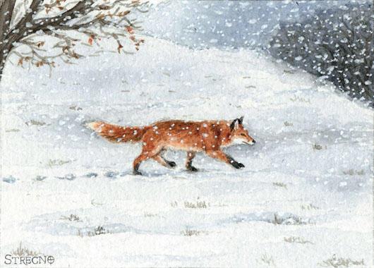 Winter Fox ACEO by Strecno