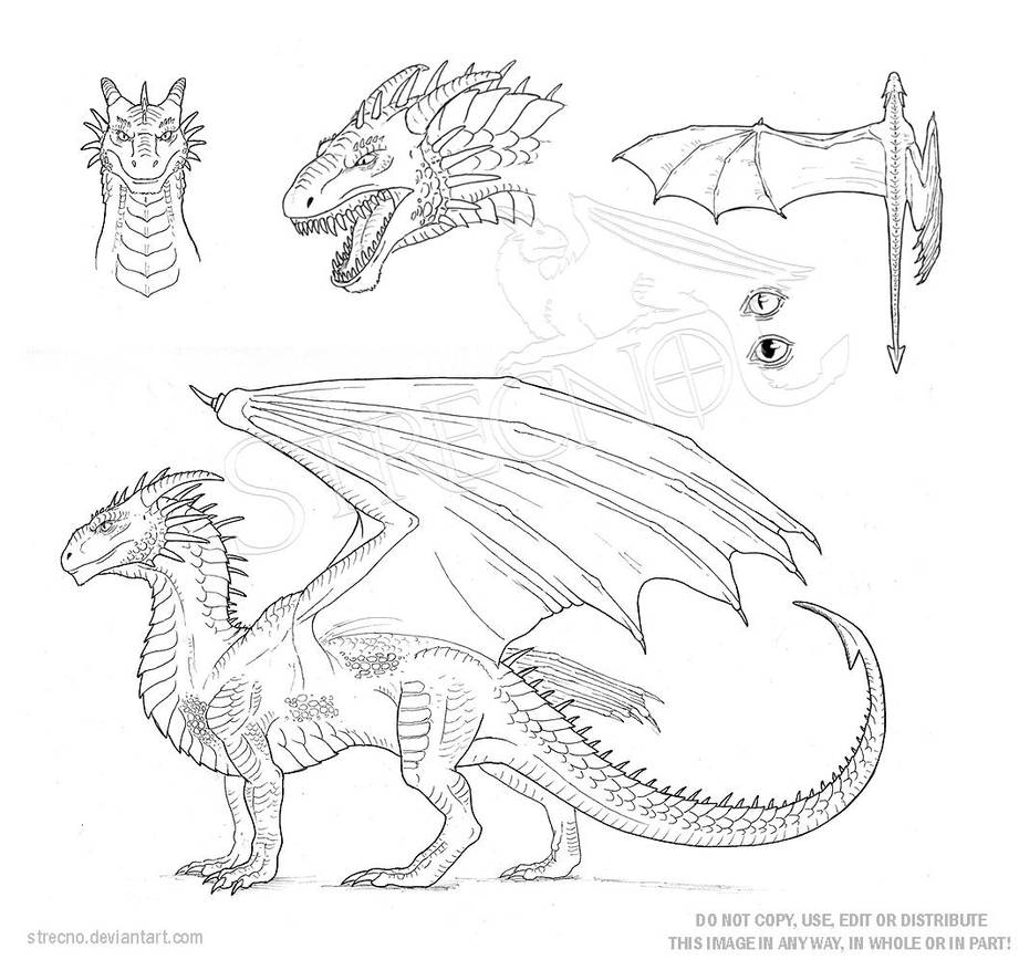 Character Template | Dragon Character Sheet Template By Strecno On Deviantart
