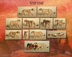 Vitani Sculpture by Strecno