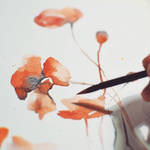Poppies I, watercolor by jane-beata