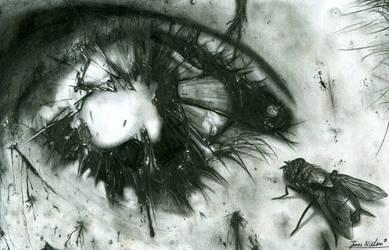 Eye of Decay by PyramidHeadxXx