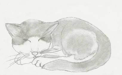 Rupert sketch by gymnastar1326kairi